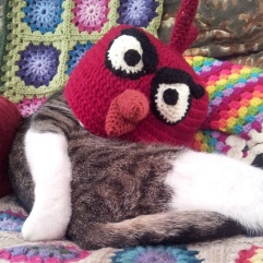 Percy modelling Tex's Angry Birds hat
